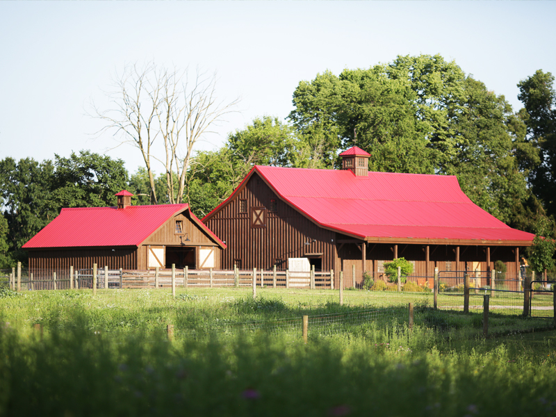 Dapple High Farm